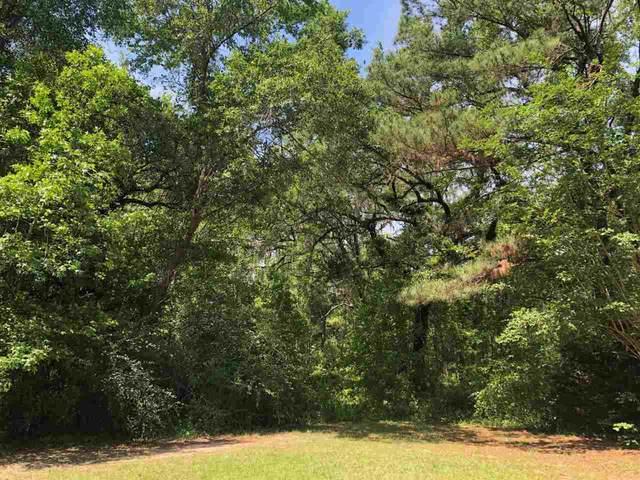 VACANT E 1st Lane, Greenville, FL 32331 (MLS #331427) :: Danielle Andrews Real Estate