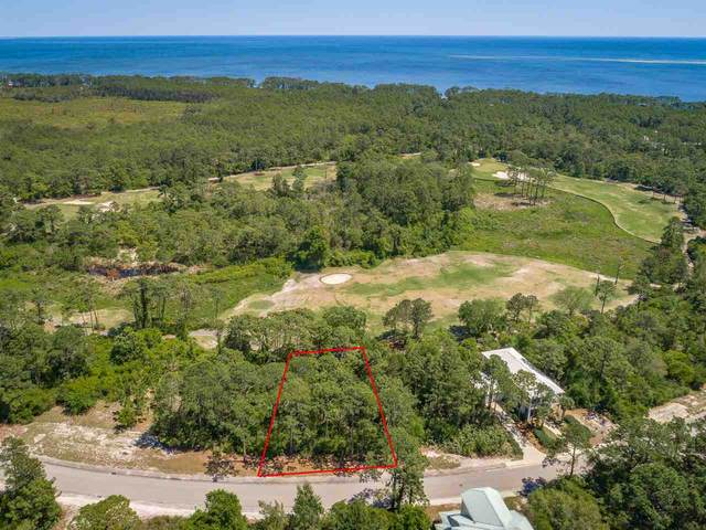 262 Royal Tern Way, Carrabelle, FL 32322 (MLS #331449) :: Team Goldband
