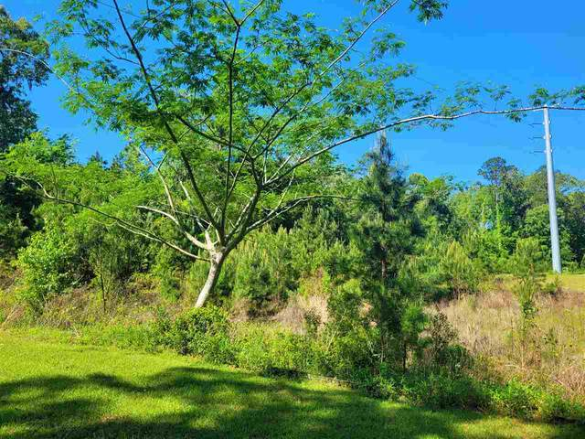 Hickory Woods Trail Lot 5, Tallahassee, FL 32312 (MLS #331522) :: Danielle Andrews Real Estate