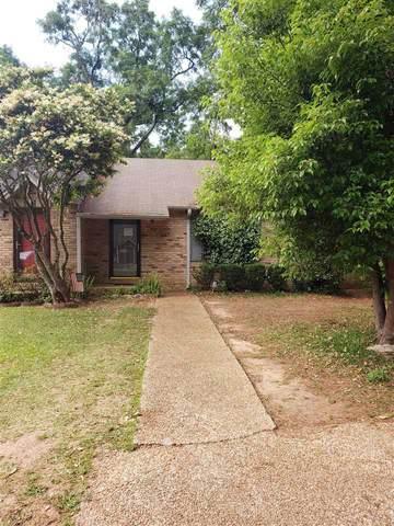 1244 Copper Creek Drive, Tallahassee, FL 32311 (MLS #331577) :: Team Goldband