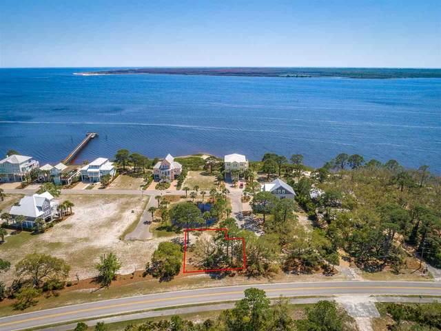 10 Baltimore Clipper Court, Ochlockonee Bay, FL 32346 (MLS #331722) :: Danielle Andrews Real Estate