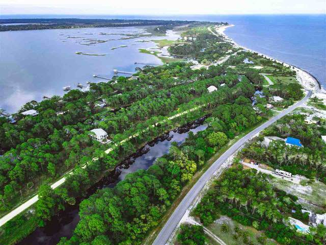 xxx Alligator Harbor Drive, Alligator Point, FL 32346 (MLS #331739) :: Team Goldband