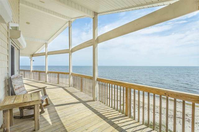 13 Bass Street, Bald Point, FL 32346 (MLS #331756) :: Team Goldband