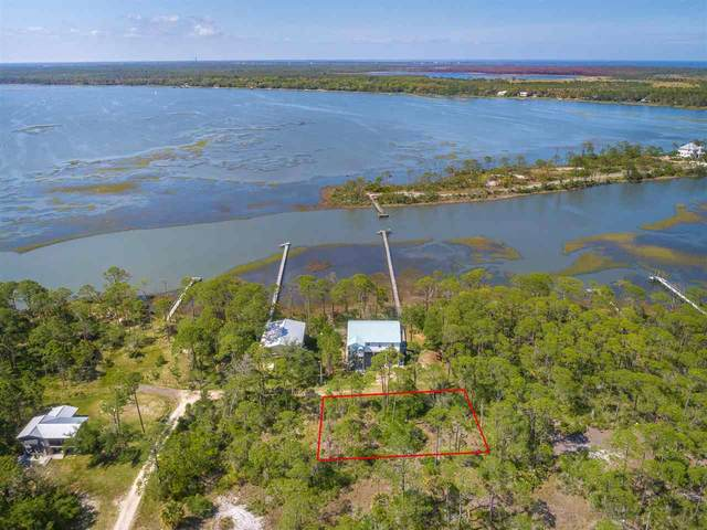 12 Pelican Street, Alligator Point, FL 32346 (MLS #331785) :: Team Goldband