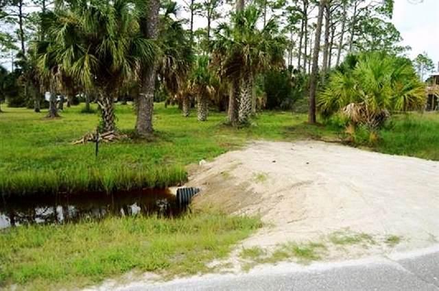 0 Cedar Island Road #0, Keaton Beach, FL 32348 (MLS #331852) :: Danielle Andrews Real Estate