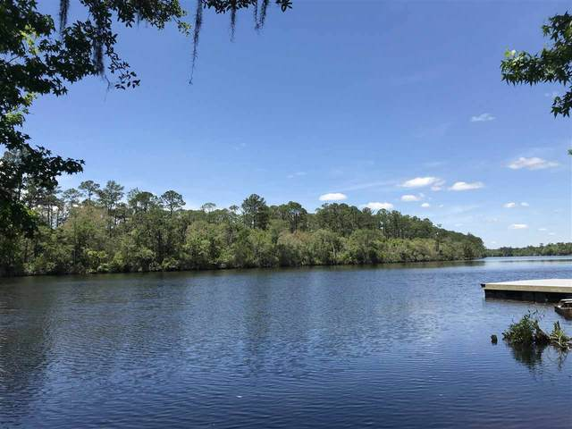 xx Big Fish Drive, Sopchoppy, FL 32358 (MLS #331938) :: Team Goldband