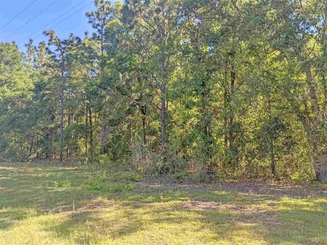 Vacant NE Old Blue Springs Road, Lee, FL 32059 (MLS #331993) :: Team Goldband