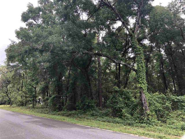 xx Purify Bay Road, Crawfordville, FL 32327 (MLS #332101) :: Team Goldband
