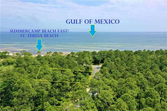 129 Campfire Lane, St Teresa, FL 32358 (MLS #332119) :: Team Goldband