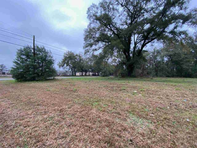711 Willie Ruth Williams Lane, Quincy, FL 32351 (MLS #332170) :: Danielle Andrews Real Estate