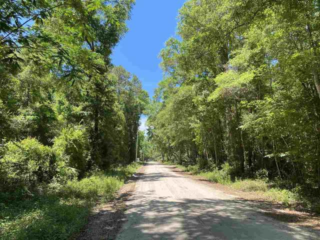 Lot 28 Stratton Lane, Crawfordville, FL 32327 (MLS #332370) :: Danielle Andrews Real Estate