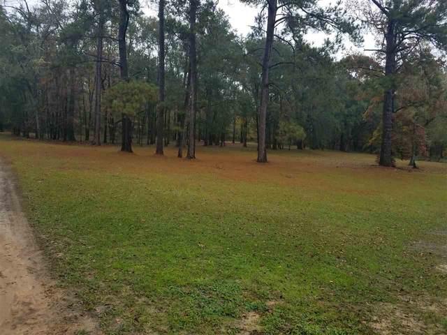 9152 William M Smith Lane, Tallahassee, FL 32309 (MLS #332372) :: Danielle Andrews Real Estate