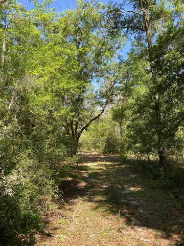 XX Floyd Gray Road, Crawfordville, FL 32327 (MLS #332390) :: Danielle Andrews Real Estate
