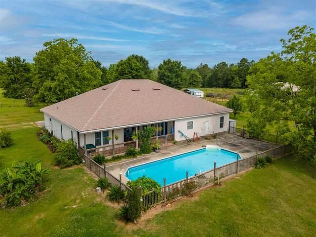 1446 Turkey Roost Trail, Tallahassee, FL 32317 (MLS #332399) :: Danielle Andrews Real Estate