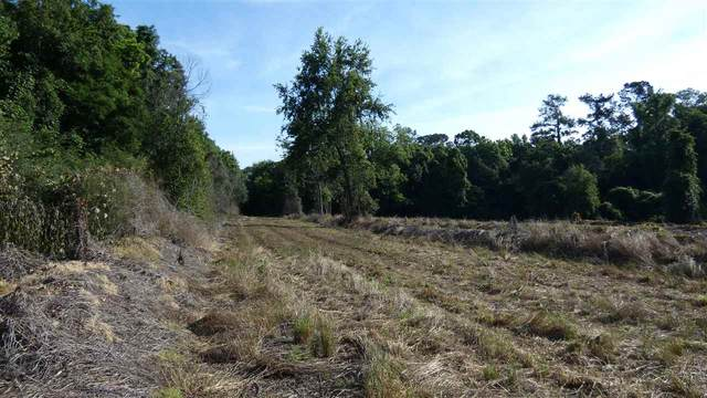 Rocky Branch Road, Monticello, FL 32344 (MLS #332418) :: Danielle Andrews Real Estate