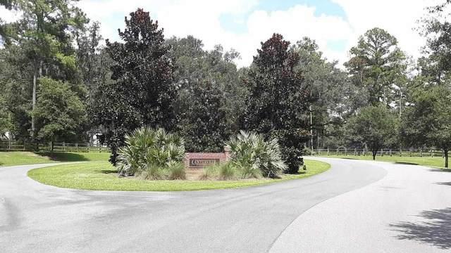 xxx Bird Dog Point, Tallahassee, FL 32309 (MLS #332613) :: Team Goldband
