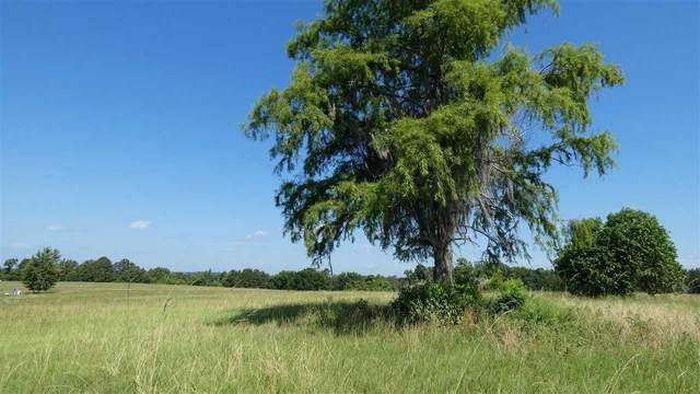 TBD Hill Top Drive, Monticello, FL 32344 (MLS #332898) :: Danielle Andrews Real Estate