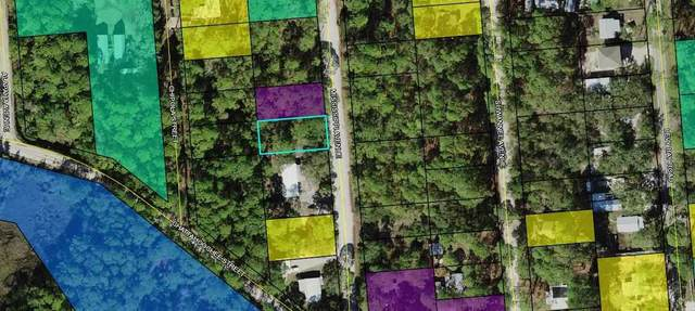 lot 28 Mississippi Avenue, Panacea, FL 32346 (MLS #333090) :: Danielle Andrews Real Estate
