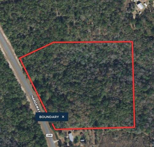 1165 Hardaway Highway, Chattahoochee, FL 32324 (MLS #333276) :: Danielle Andrews Real Estate