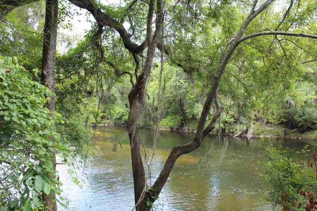 Vacant NE Withla Bluffs Way, Lee, FL 32059 (MLS #333370) :: Danielle Andrews Real Estate