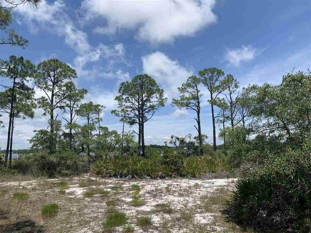 237 Hidden Harbor, Alligator Point, FL 32346 (MLS #333549) :: Danielle Andrews Real Estate