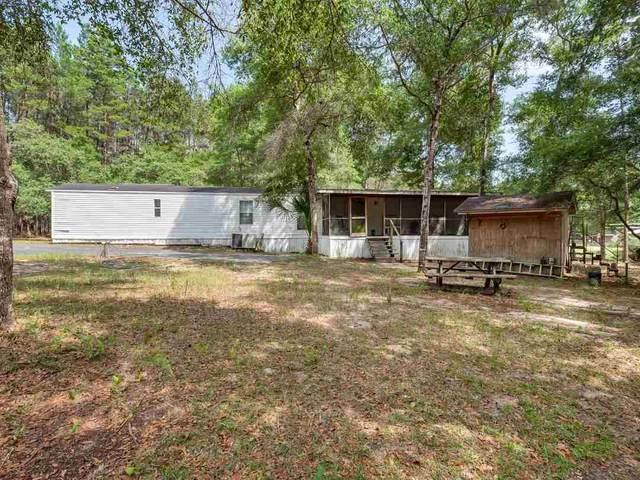 231 NE Webb Lane, Steinhatchee, FL 32359 (MLS #333563) :: Danielle Andrews Real Estate