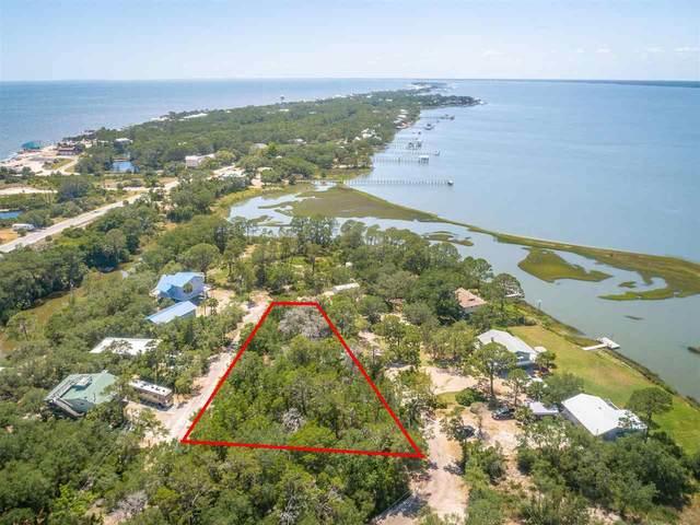 1282 Peninsular Cir, Alligator Point, FL 32346 (MLS #333603) :: Danielle Andrews Real Estate