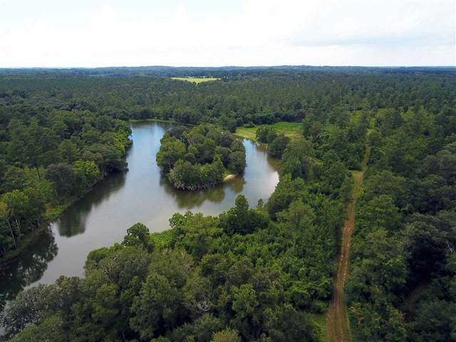 9900 Hidden Pond Road, Tallahassee, FL 32317 (MLS #333695) :: Danielle Andrews Real Estate