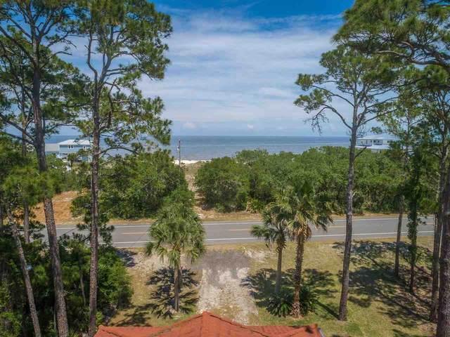 617 Bald Point Road, Bald Point, FL 32346 (MLS #333804) :: Danielle Andrews Real Estate