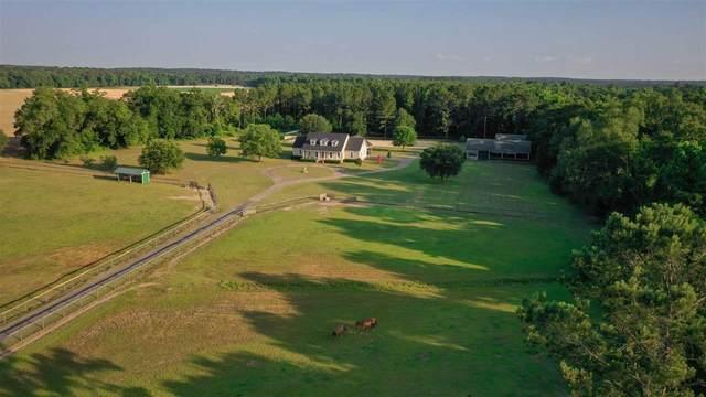 767 Mizpah Road, Whigham, GA 39897 (MLS #333864) :: Danielle Andrews Real Estate