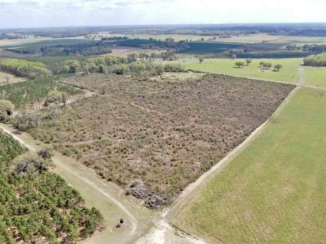 2027 NE Cattail Drive, Madison, FL 32340 (MLS #333975) :: Danielle Andrews Real Estate
