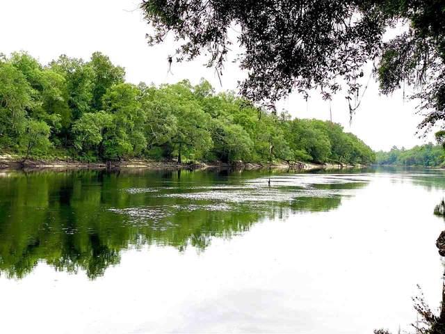 754 NW Suwannee Meadows, Mayo, FL 32066 (MLS #333986) :: Danielle Andrews Real Estate