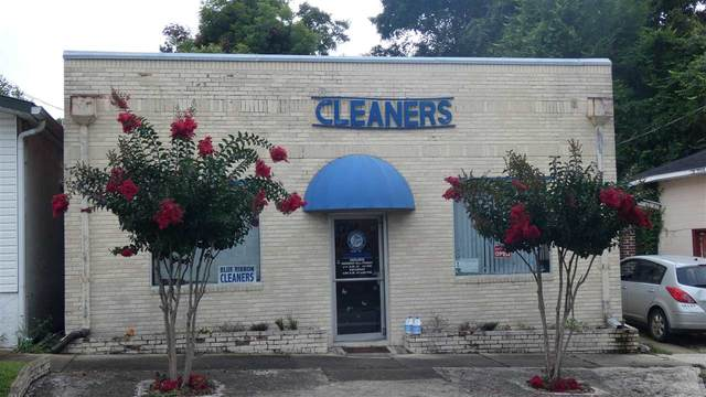 190 S Cherry Street, Monticello, FL 32344 (MLS #334034) :: Team Goldband