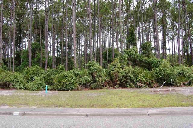 151 Royal Tern Way, Carrabelle, FL 32322 (MLS #335071) :: Team Goldband