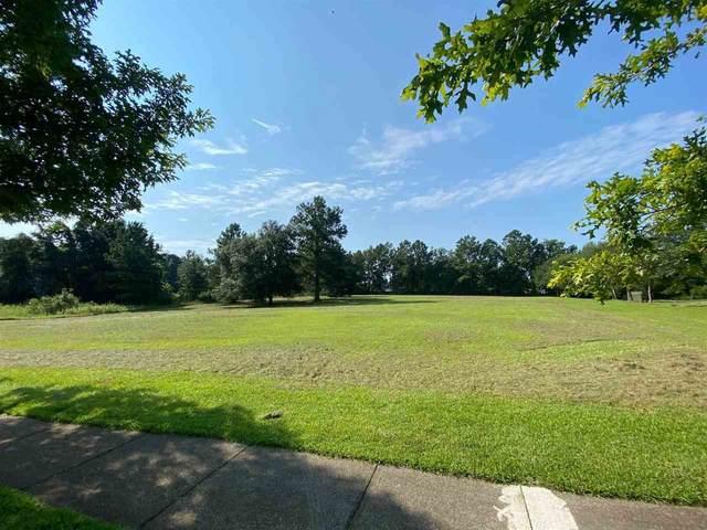 1965 Quail Grove Lane, Tallahassee, FL 32311 (MLS #335388) :: Danielle Andrews Real Estate