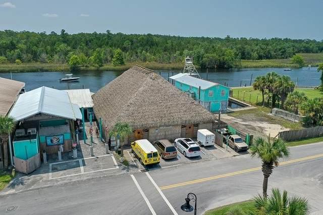 69 Riverside Drive, St Marks, FL 32355 (MLS #335397) :: Team Goldband