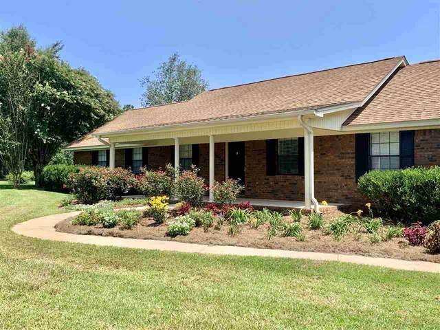 11071 Bexhill Lane, Tallahassee, FL 32317 (MLS #335597) :: Danielle Andrews Real Estate