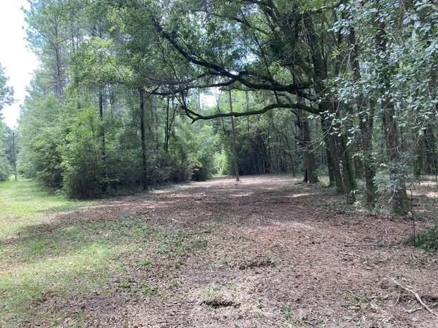 XXX Rutledge Road, Tallahassee, FL 32317 (MLS #335680) :: Danielle Andrews Real Estate