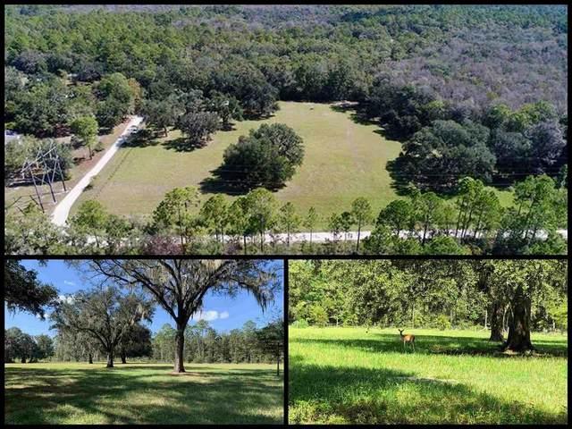 155 Lost Creek Lane, Crawfordville, FL 32327 (MLS #335759) :: Danielle Andrews Real Estate