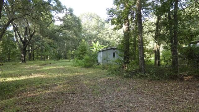 749 E Buckhorn Trail, Greenville, FL 32331 (MLS #336968) :: Danielle Andrews Real Estate