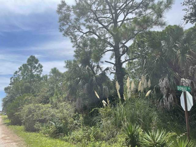 1443 Donax Place -, Alligator Point, FL 32346 (MLS #337107) :: Danielle Andrews Real Estate