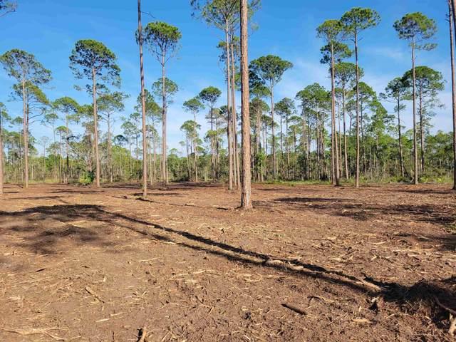 Lot 11 Pelican Way, Ochlockonee Bay, FL 32346 (MLS #337261) :: Danielle Andrews Real Estate