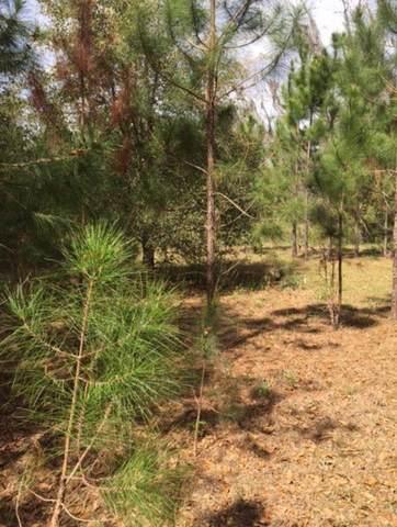 Thomas Road, Monticello, FL 32344 (MLS #337272) :: Danielle Andrews Real Estate