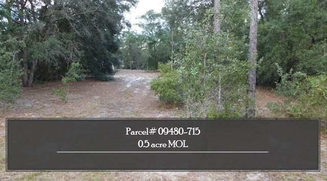 912 NW Bird Pond Road, Steinhatchee, FL 32359 (MLS #337452) :: Danielle Andrews Real Estate
