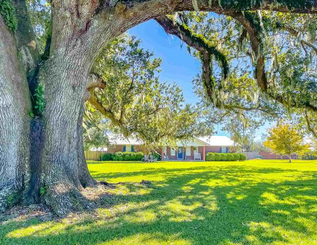 18469 NE Frank Williams Lane, Blountstown, FL 32424 (MLS #337673) :: The Elite Group | Xcellence Realty Inc