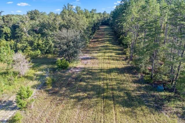 Lot 3 Highway 20 Highway, Hosford, FL 32334 (MLS #337831) :: Team Goldband