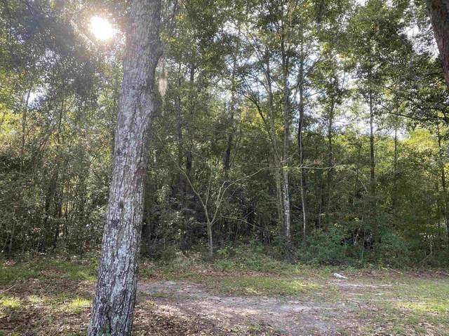 xx Fleischmann Road, Tallahassee, FL 32308 (MLS #338344) :: Danielle Andrews Real Estate