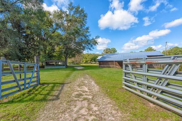 305 Finelli Lane, Quincy, FL 32351 (MLS #338481) :: Danielle Andrews Real Estate