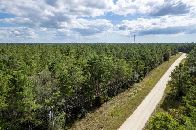 Vacant Fawn Way, Perry, FL 32348 (MLS #338495) :: Danielle Andrews Real Estate