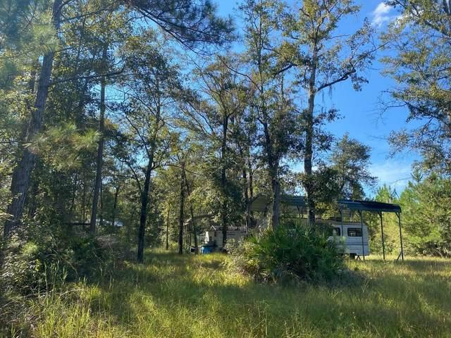 Vacant SW Overstreet Avenue, Greenville, FL 32331 (MLS #338501) :: Danielle Andrews Real Estate